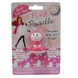 DP0236-GYO-Pink-Poodle-600.jpg