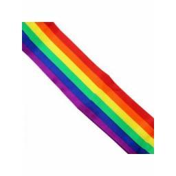 rainbow_design_sashe.jpg