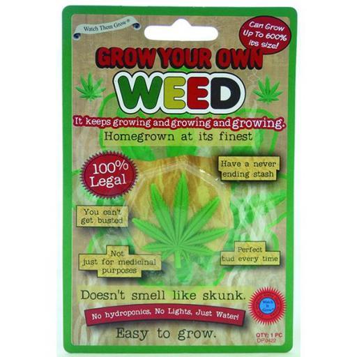 DP0422-Grow-Weed-600.jpg